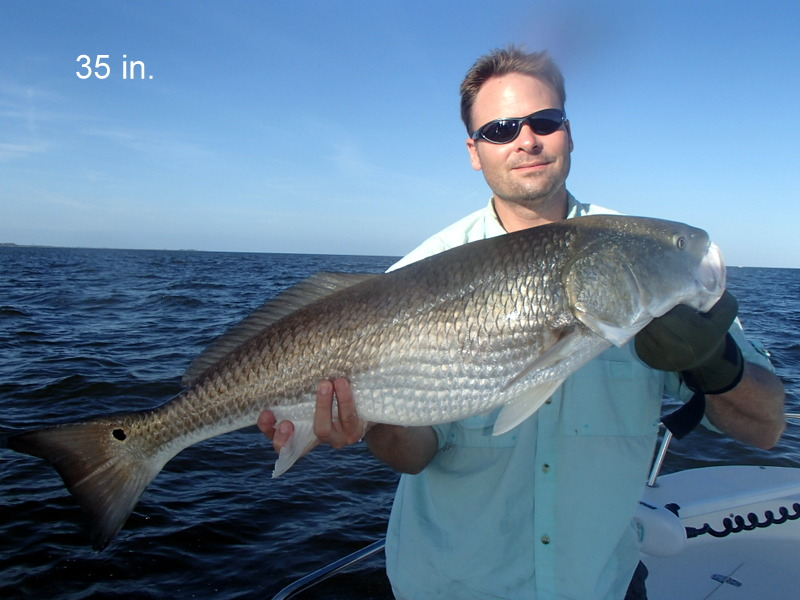 Bp claims for recreational fishing licenses free for Mississippi fishing license cost